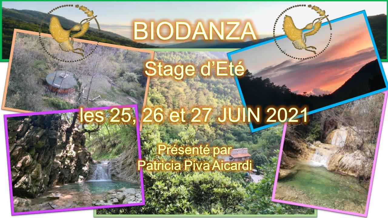 Biodanza stage été